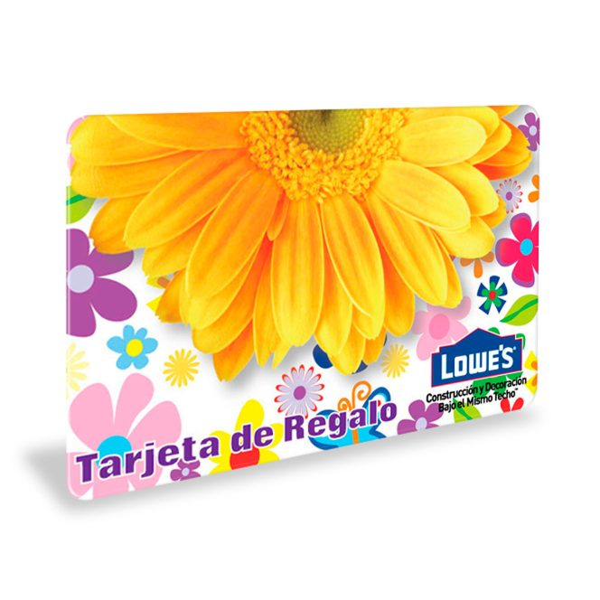 regalo-lowes